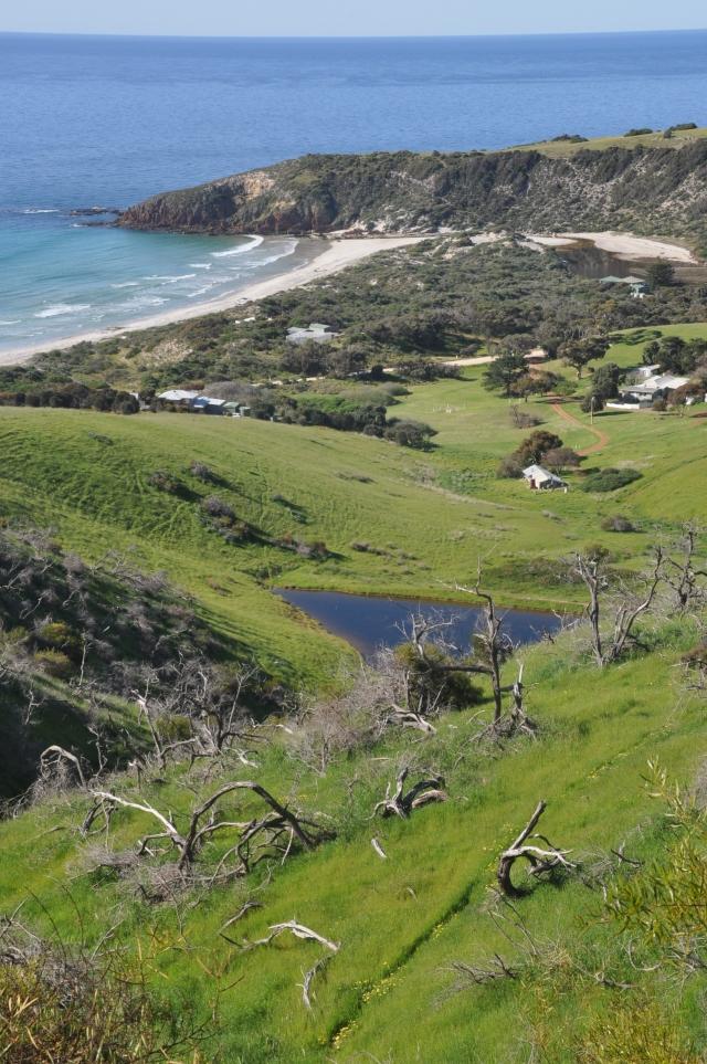 Kangaroo Island (842)